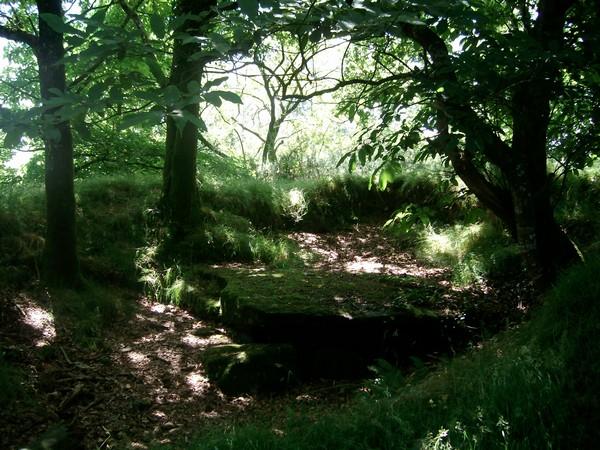 Dolmen de Kergonfalz - Bignan