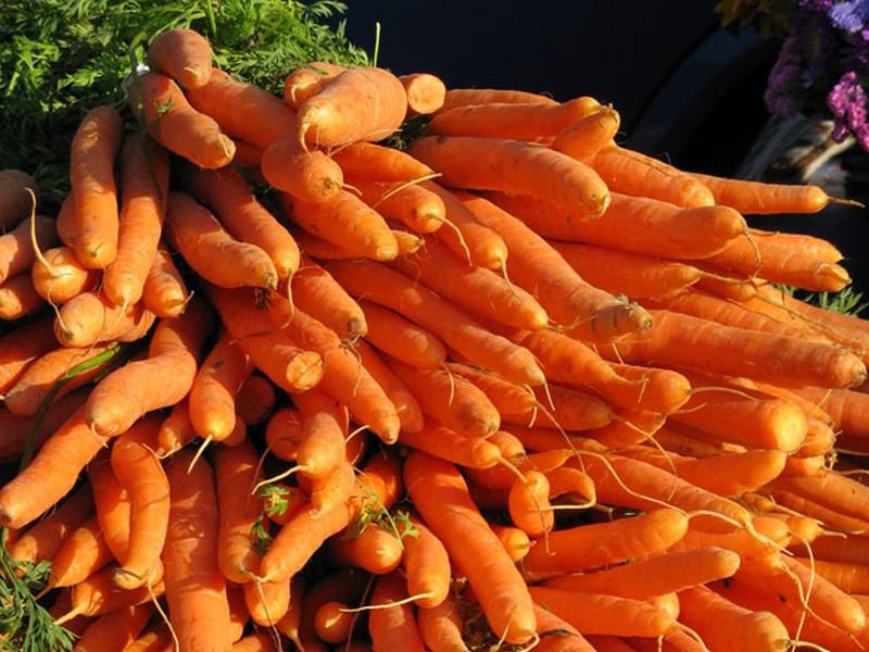 Les Légumes du Ninian - Helléan
