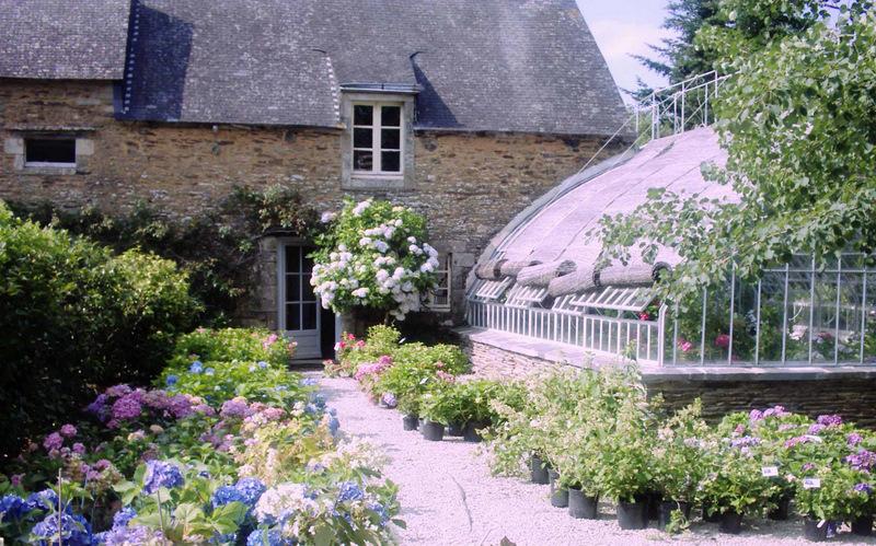 Pépinière Les Hortensias du Haut Bois - Taupont